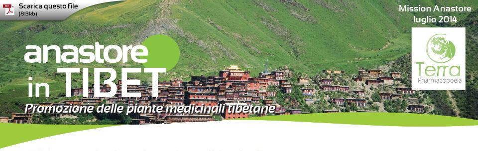 Anastore in Tibet - Promozione delle piante medicinali tibetane