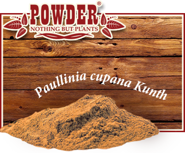 POWDER - GUARANÀ BIO IN POLVERE