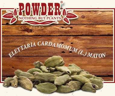 POWDER - CARDAMOMO BIO